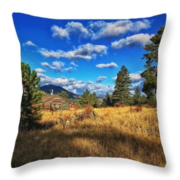 Throw Pillow featuring the photograph Abandoned Cabin by Dan Miller
