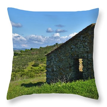 Abandoned Cottage In Alentejo Throw Pillow
