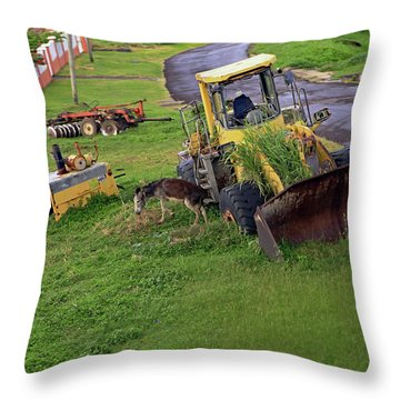 Throw Pillow featuring the photograph Abandoned by Tony Murtagh