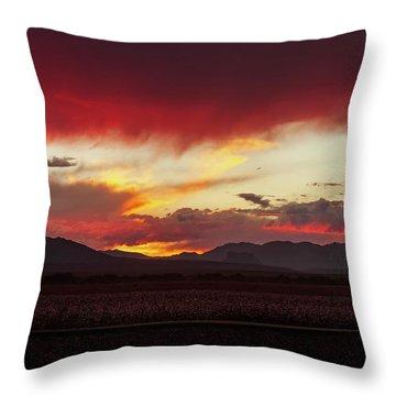 Throw Pillow featuring the photograph Ablaze by Rick Furmanek