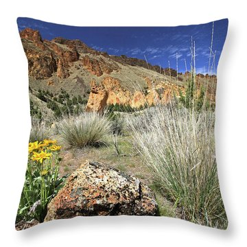 Above Juniper Gulch Throw Pillow