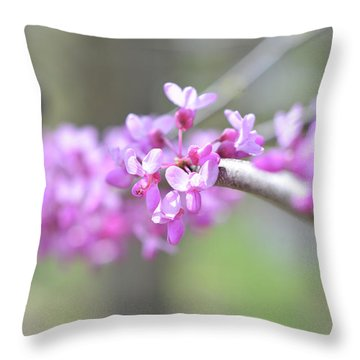 Throw Pillow featuring the photograph Absence by Michelle Wermuth