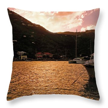 Abstractions Of Coral Bay Throw Pillow