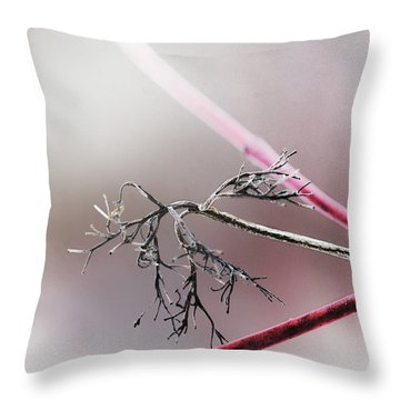 Accent On Reds Throw Pillow