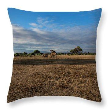 Amboseli Throw Pillow