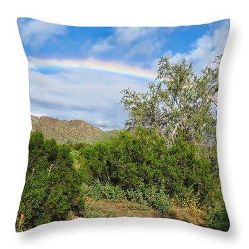 After An Arizona Winter Rain Throw Pillow
