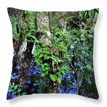 After Forever Ends Throw Pillow