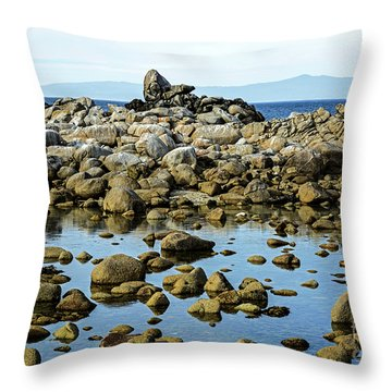 After The Waves Calmed Down Throw Pillow