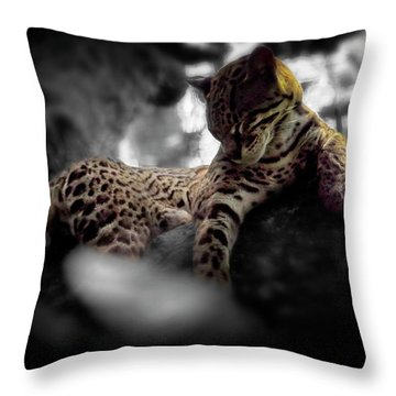Afternoon Rest Throw Pillow