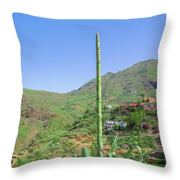 Agave With Flower Spear In Masca Throw Pillow