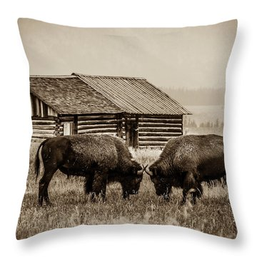 Age Old Conflict Throw Pillow