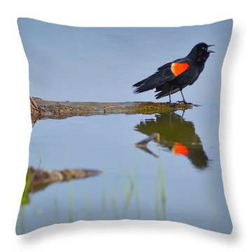 Throw Pillow featuring the photograph Agelaius Phoeniceus by Carl Young