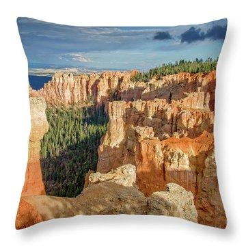 Agua Canyon Throw Pillow