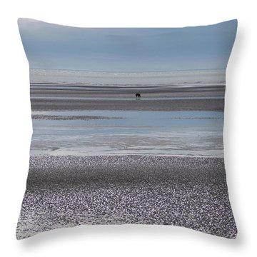 Alaska Brown Bear On The Shore Throw Pillow