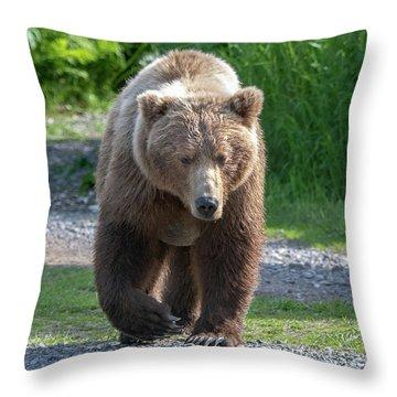 Alaskan Brown Bear Walking Towards You Throw Pillow