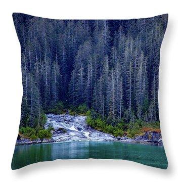 Alaskan Coastline Beauty Throw Pillow