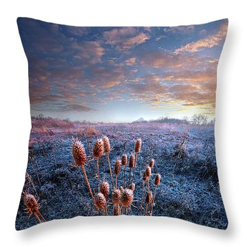 All That You Need Is In Your Soul Throw Pillow