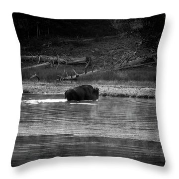 Almost Throw Pillow