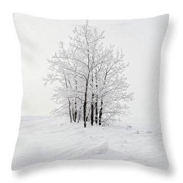 Alone On The Prairie Throw Pillow