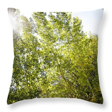 Alpine Sunlight In The Rockies Throw Pillow
