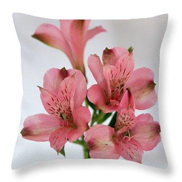 Alstroemeria Up Close Throw Pillow