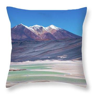 Altiplano View Throw Pillow