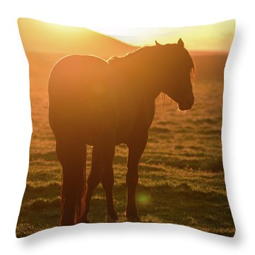 Always Shining Throw Pillow