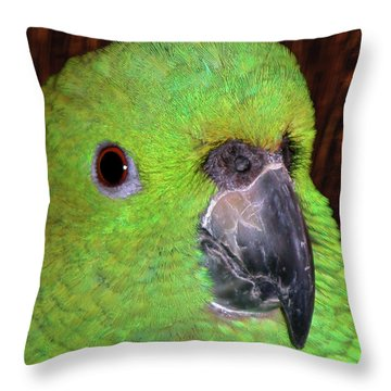 Throw Pillow featuring the photograph Amazon Parrot by Debbie Stahre