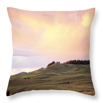 Hayden Throw Pillows Fine Art America