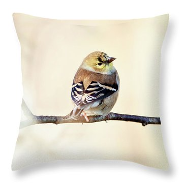 Throw Pillow featuring the photograph American Goldfinch by Sue Collura