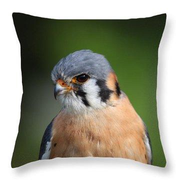American Kestrel 5151801 Throw Pillow