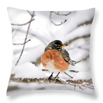 American Robin In The Snow Throw Pillow