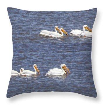American White Pelican  Throw Pillow