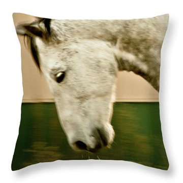 Americano 14 Throw Pillow