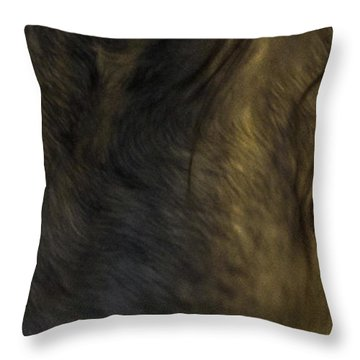 Americano 20 Throw Pillow