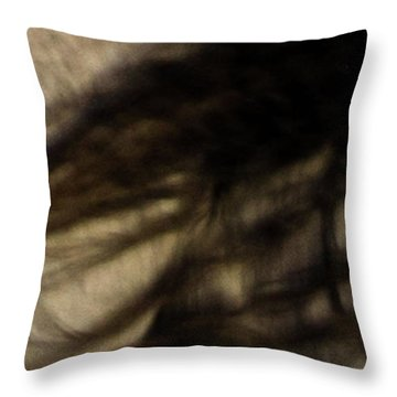 Americano 8 Throw Pillow
