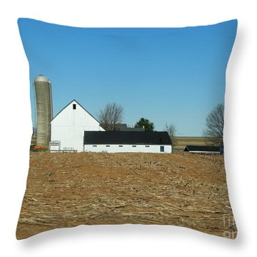 Amish Farm Days Throw Pillow