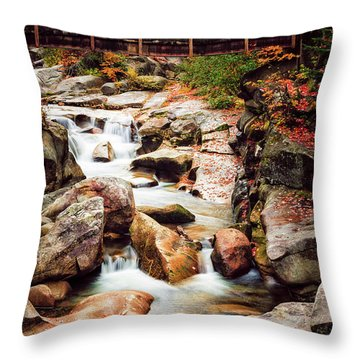 Ammonoosuc River, Autumn Throw Pillow