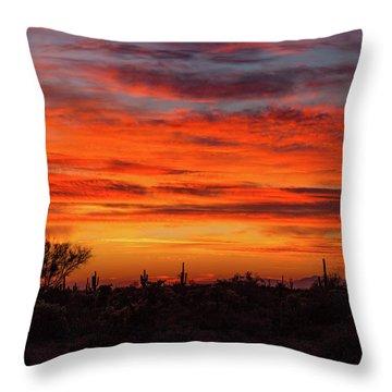 Throw Pillow featuring the photograph An Arizona Sky by Rick Furmanek