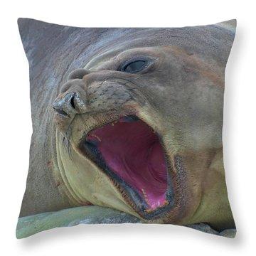 An Elephant's Roar Throw Pillow