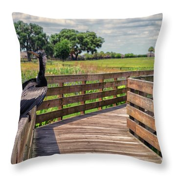 An Ahinga Moment Throw Pillow