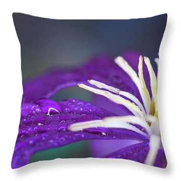 Throw Pillow featuring the photograph Ancient Joy by Michelle Wermuth