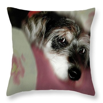 And This Is Sparky	 Throw Pillow