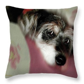 And This Is Sparky	6 Throw Pillow
