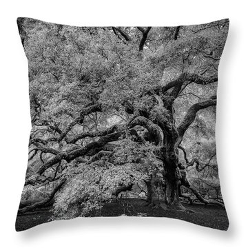Throw Pillow featuring the photograph Angel Oak Tree Black And White by Rick Berk