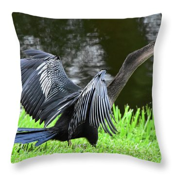Anhinga Surprise Throw Pillow