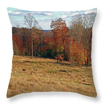 Throw Pillow featuring the photograph Animals Grazing On A Fall Day by Angela Murdock