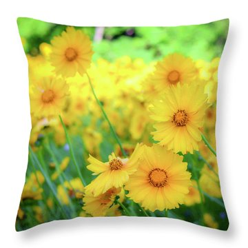 Another Glimpse, Pollinator Field Throw Pillow