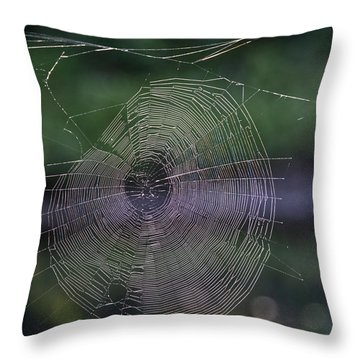 Another Web Throw Pillow