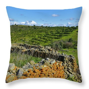 Antique Stone Wall Of An Old Farm Throw Pillow